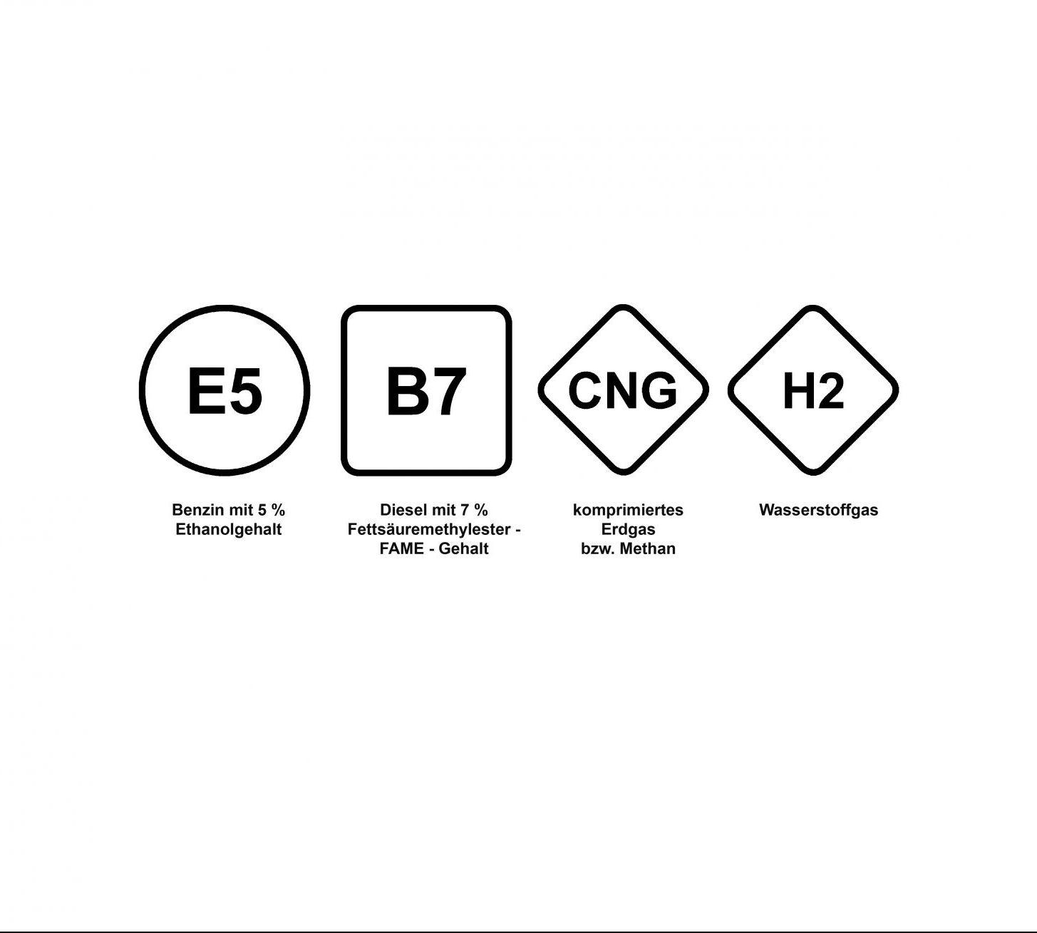 In der EU sollen einheitliche Kraftstoffsymbole beim Tanken im Ausland helfen. (Foto: DIN)