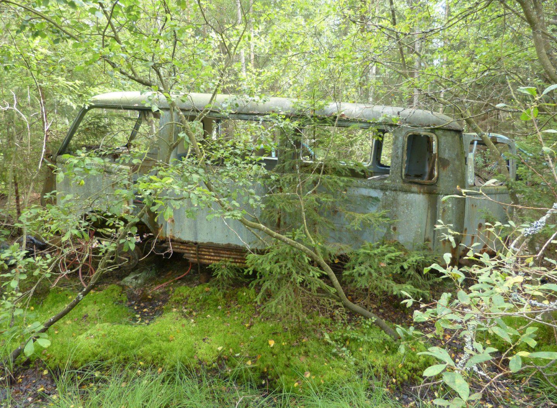 atr-motus-rostig-bus-wald-auto-museum-ryd-moor-schweden.jpg