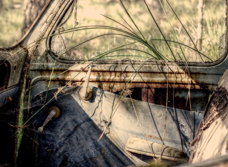 Gras wächst in altes rostiges Auto