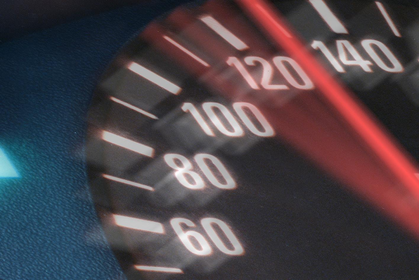 In Bereichen mit viel Wildwchsel empfiehlt es sich, nicht schneller als 70 bis 80 Stundenkilometer zu fahren. Bild: AdobeStock / Uwe
