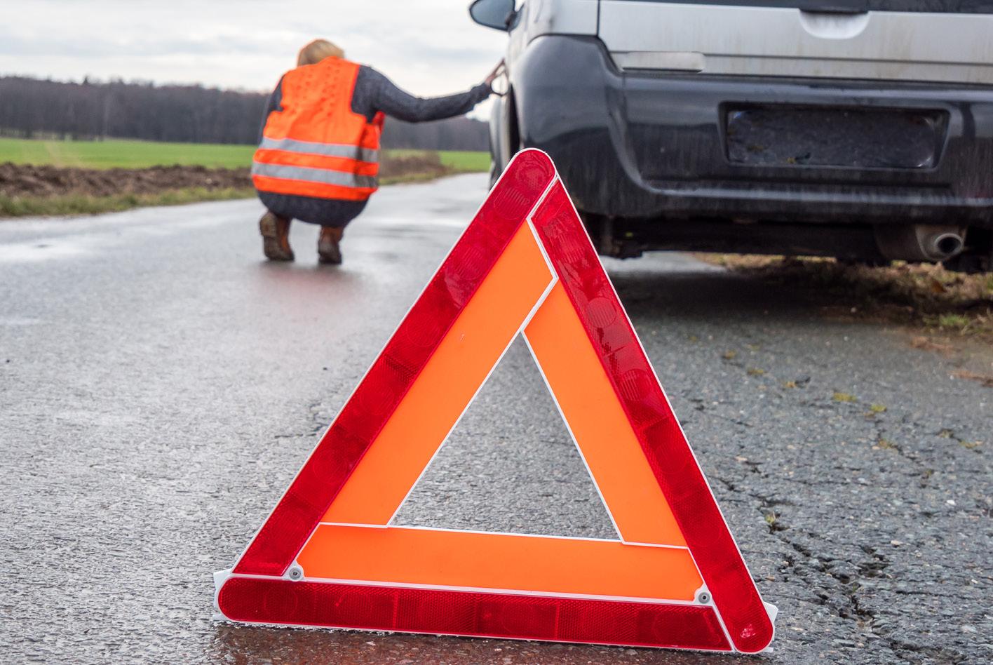 Wenn ihr einen Wildunfall habt, müsst ihr zunächst die Unfallstelle absichern. Bild: AdobeStock / arborpulchra