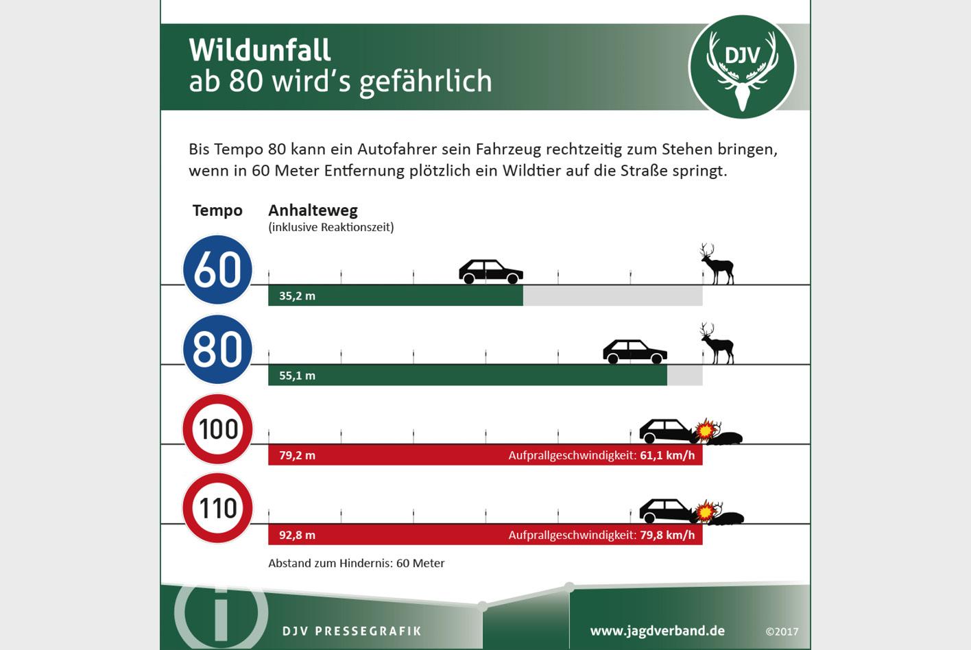 Bild: Kapuhs/Deutscher Jagdverband